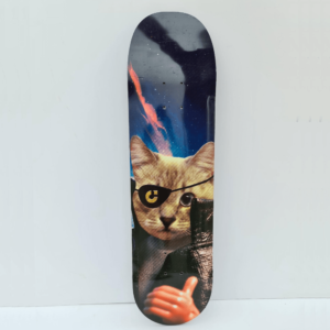Capsule Skateboards - Action Figure